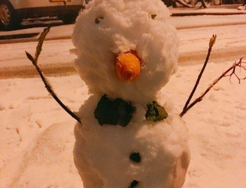 💙⛄️雪が降ったら遊びましょう⛄️💙